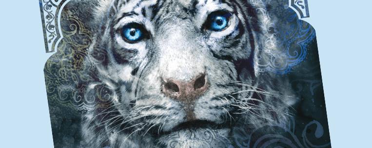 Destaque - Livro A Maldição do Tigre
