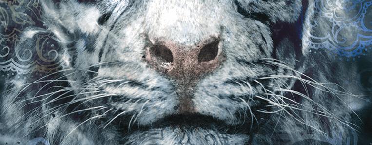 Nariz do tigre da capa do livro A Maldição do Tigre